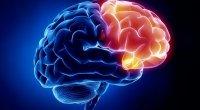 Beyin 3 şeyi xoşlamır - Alimdən bilmədiyiniz MƏLUMATLAR