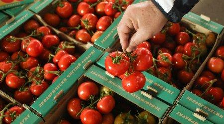Daha 34 müəssisə Rusiyaya pomidor satacaq